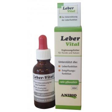 Leber-Vital