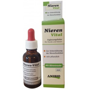 Nieren-Vital